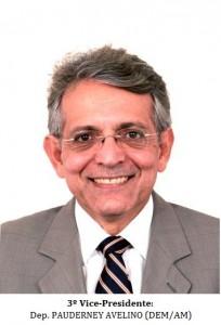 3º Vice-Presidente - PAUDERNEY AVELINO (DEM-AM)  - B