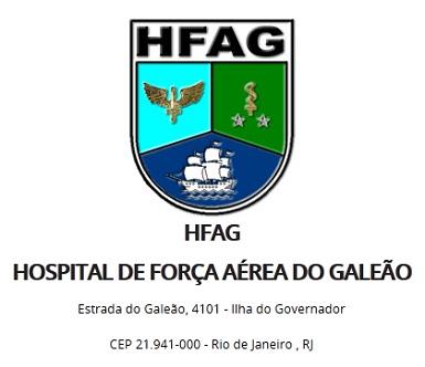 HFAG-385